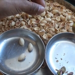 How to easily open your remaining hard to open Pistachio Nuts..00_00_23_01.Still023