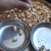 固く閉じたピスタチオの殻を開けるために!使えるライフハック術